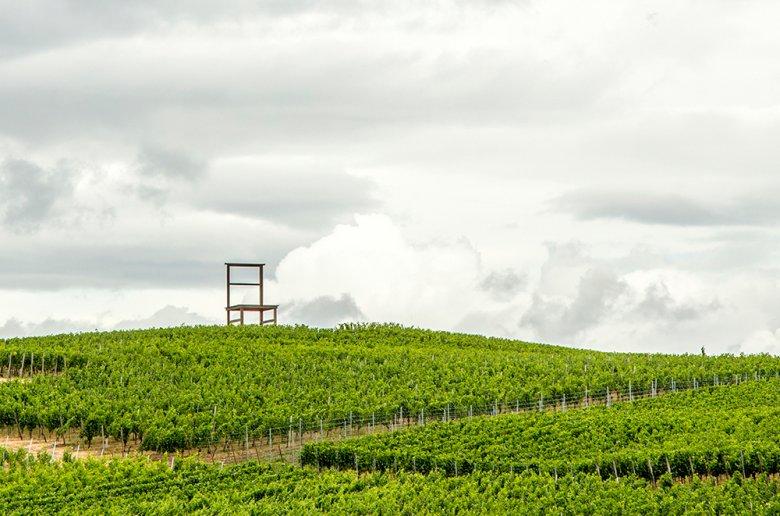 Der Kaiserstuhl ist das sonnenreichste und wärmste Weinbaugebiet in Deutschland.
