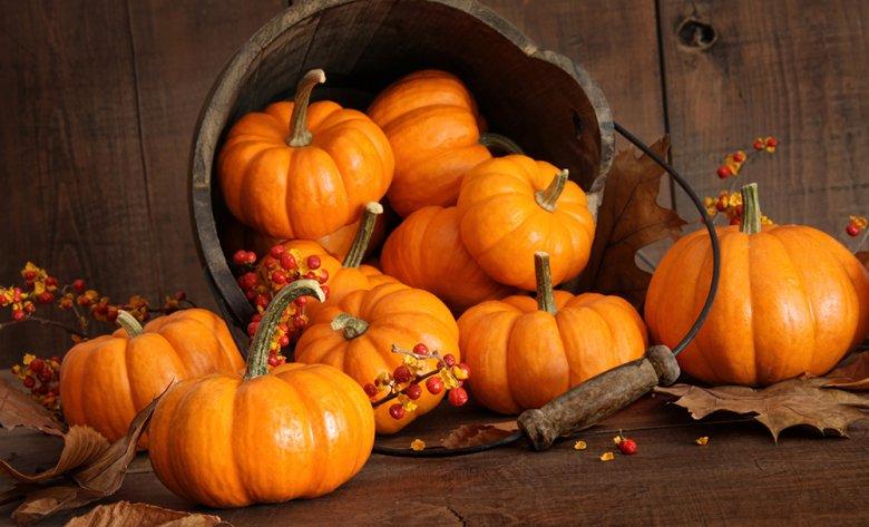 Kürbis hat im Herbst Saison - daraus können viele Köstlichkeiten zubereitet werden.
