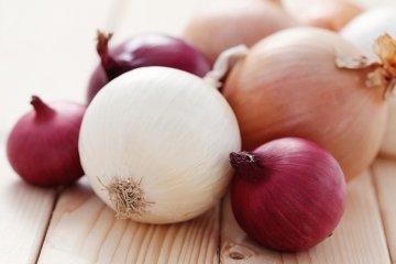 Die Zwiebel: wertvoll & gut