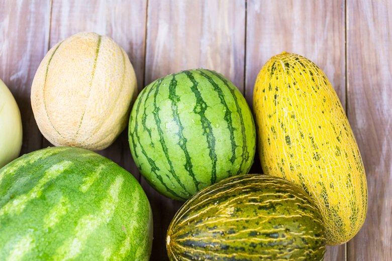 Weltweit gibt es eine Vielzahl der unterschiedlichsten Melonensorten.