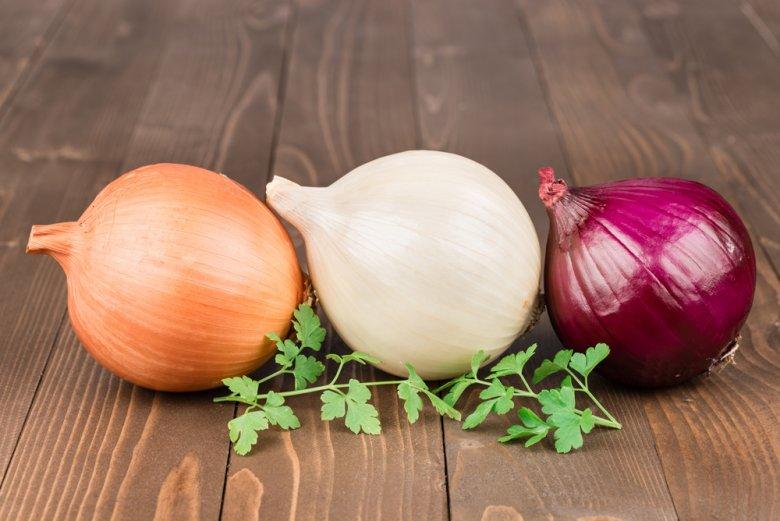 Die Zwiebel gehört zu den wichtigste Gemüsearten in Deutschland und ist auch noch gesund.