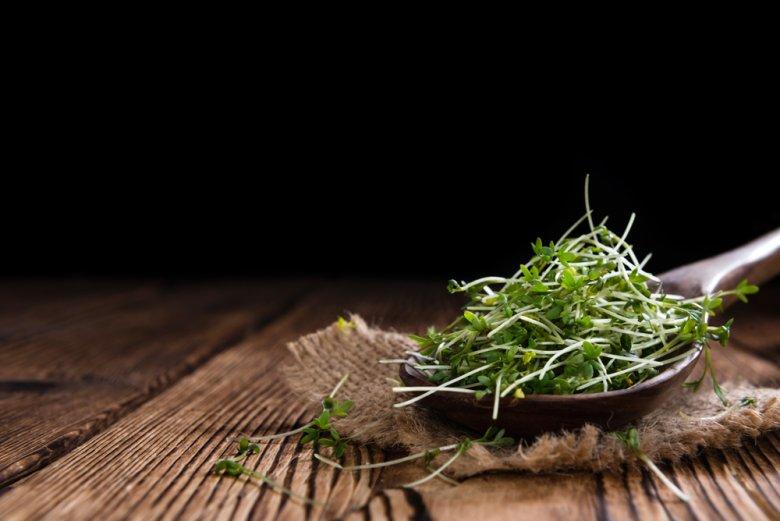 100 g Gartenkresse enthält beispielsweise 500 % der empfohlenen Tagesmenge an Vitamin K.