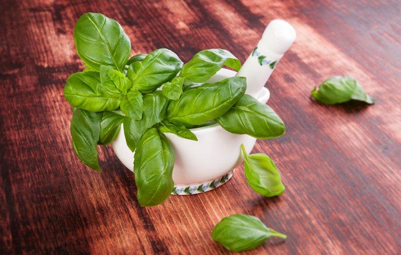 Basilikum ist eine gesunde Alternative bei Halsschmerzen, Husten oder Entzündungen im Rachen.