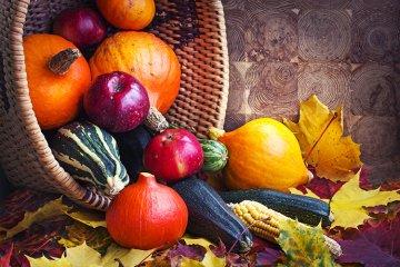 Köstliche Schmankerl im Herbst