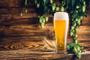 Das deutsche Bier Reinheitsgebot