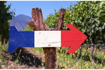 Weinland Frankreich - französische Weine