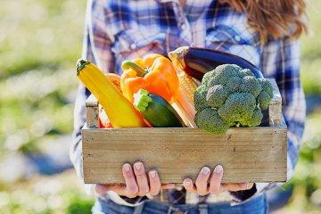 Vollwert-Ernährung: Ursprung, Konzept, Anleitung und Wissenswertes