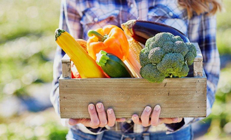 Bei der Vollwert-Ernährung stehen frische und unbehandelte Nahrungsmittel im Vordergrund.