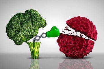 Ernährung bei einer Krebserkrankung