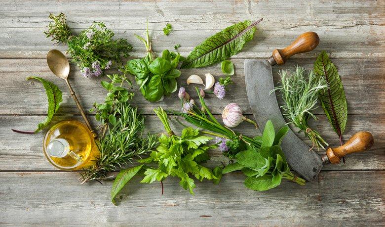Zum Würzen von Speisen sollten überwiegend frische Kräuter verwendet werden.