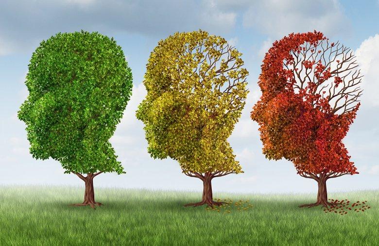 Die Demenz gehört zu den typischen Alterserscheinungen und trifft viele Menschen früher oder später im Alterungsprozess.