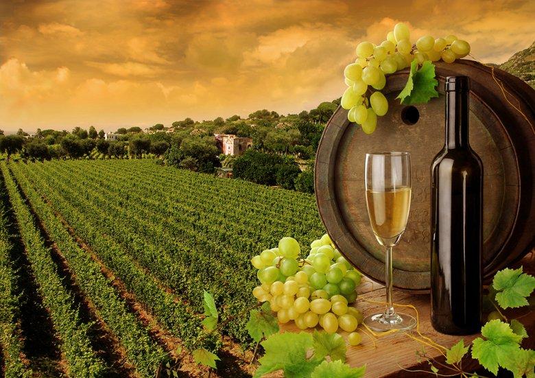 La dolce Vita - das ist Italien und dazu gehört natürlich ein italienischer Wein.