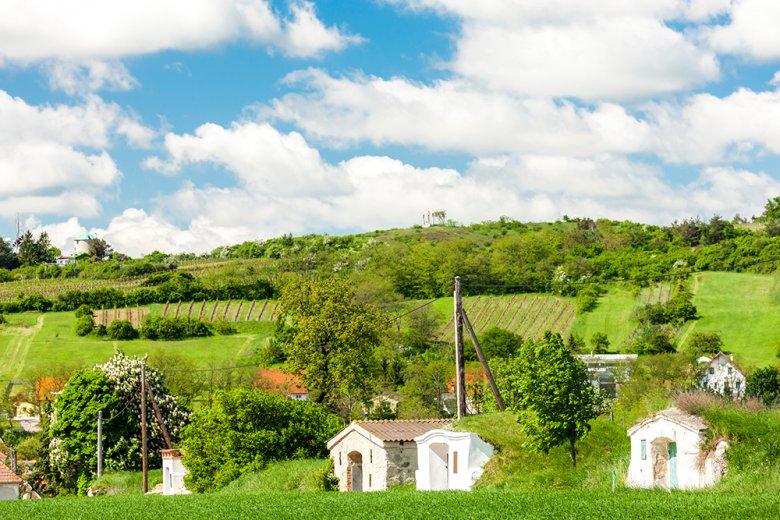Vor allem die kleinen idyllischen Weinkeller am Fuße der Weinberge sind in Österreich sehr typisch.