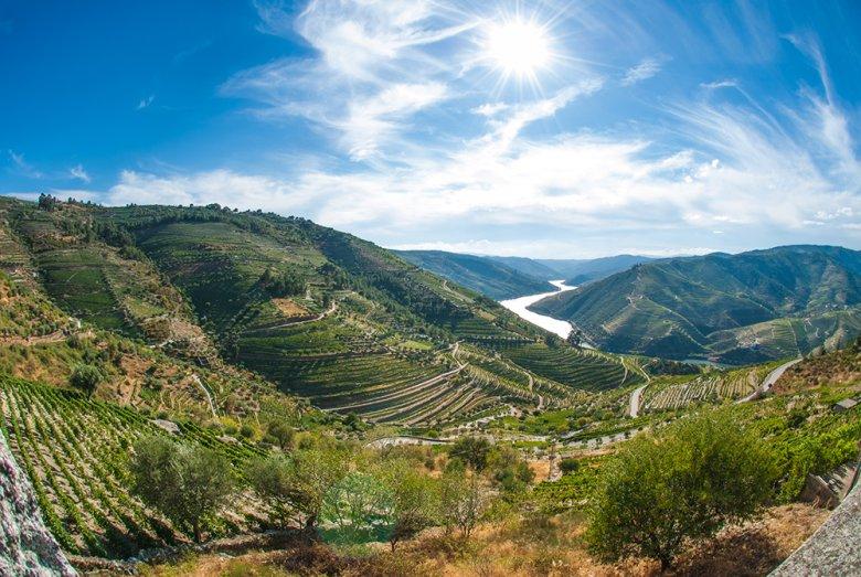 Die Weinregion Alto Douro im Douro-Tal ist die älteste Weinbauregion der Welt mit geschützter Herkunftsbezeichnung.