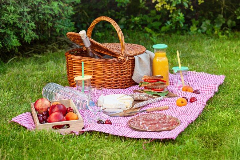 Mit der richtigen Vorbereitung steht einem gemütlichen Picknick im Garten, am Strand oder am See nichts mehr im Wege.