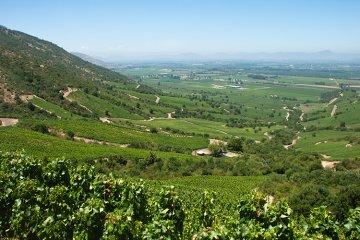 Weinland Chile - chilenische Weine