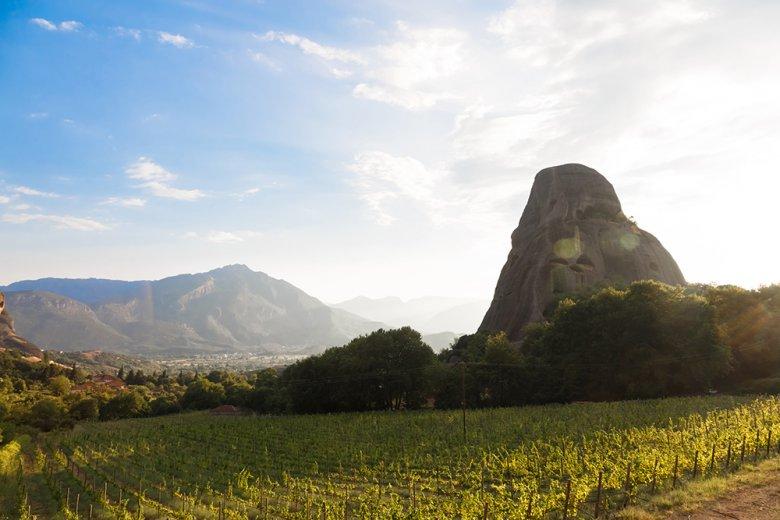 Griechenland ist auf Grund des Klimas und der Böden ein idealer Ort für die Produktion einer Vielfalt von Weintypen.