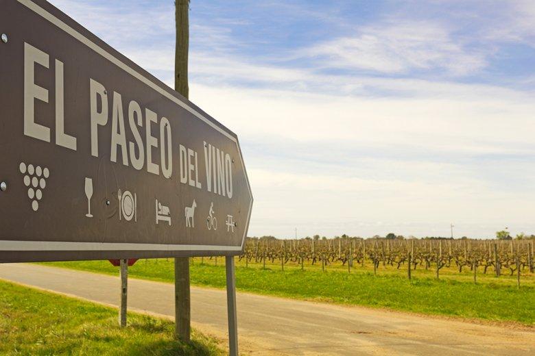 Auch in Uruguay importierten die Spanier Ende des 18. Jahrhunderts den Weinbau.
