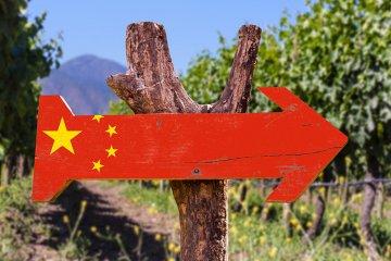 Weinland China - chinesischer Wein