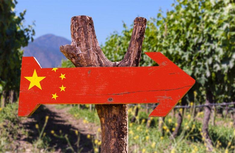 Seit Wein und Weintrinken in China zum Statussymbol gereift ist, floriert auch der Weinbau immer besser.