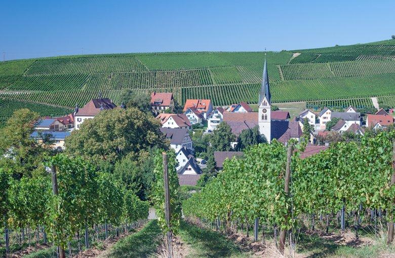 Die badische Weinstraße führt direkt durch das Weinbaugebiet Baden und gehört zur schönsten Ferienstraßen Deutschlands.