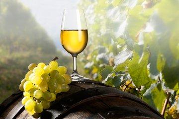 Weinregion Hessische Bergstraße