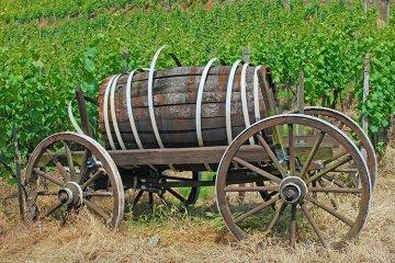 Weinregion Nahe