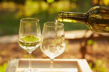 Die richtige Trinktemperatur für Wein