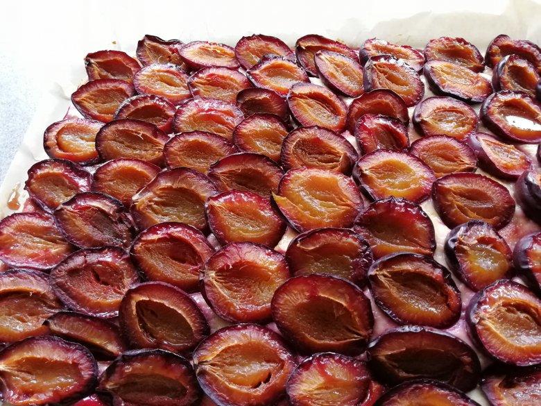 Pflaumenkuchen mit Quark-Öl-Teig