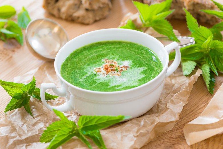 Brennnessel-Suppe